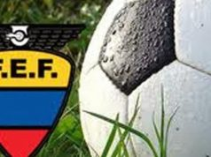 FEF_logo_balon